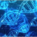 Analyse ADN : franchir le pas pour connaître sa véritable identité