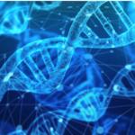 Ce qu'il faut savoir sur le test génétique